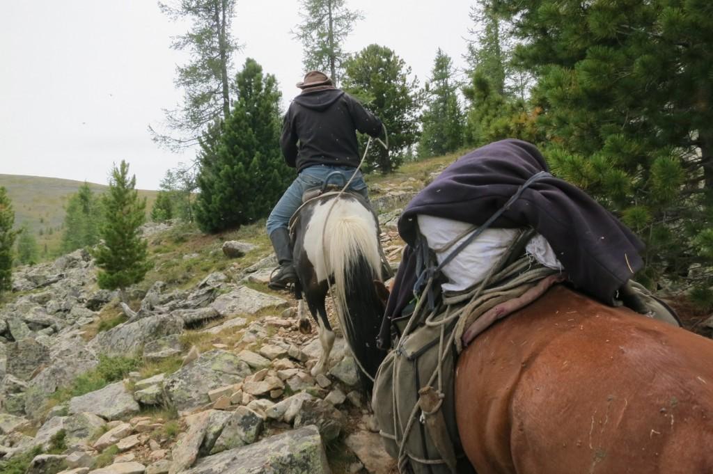 Climbing up the Mountain