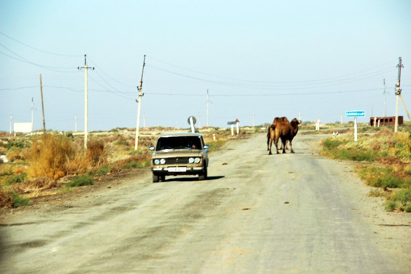 Road Trip in Karakalpakstan