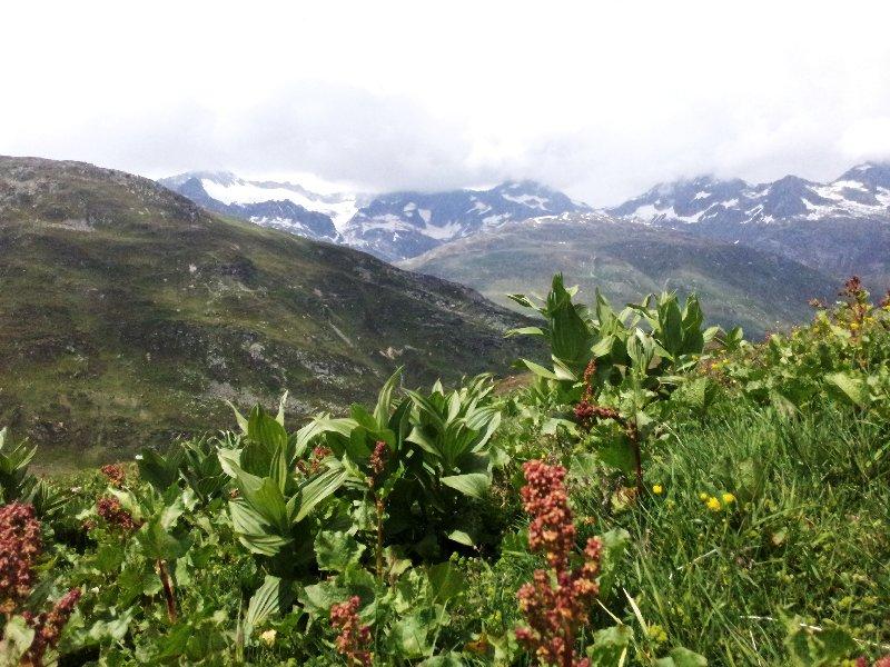 Schweiz Uri
