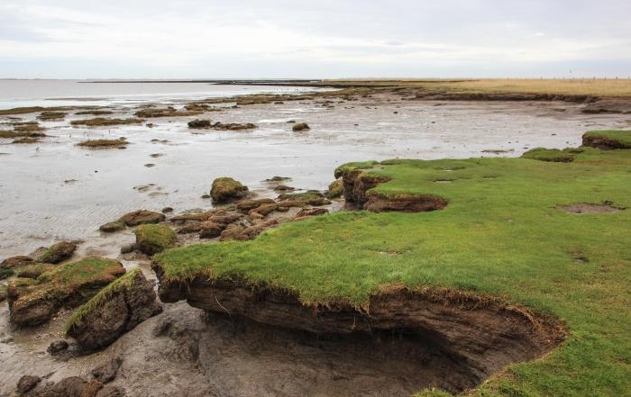 Küstenlinie Watt