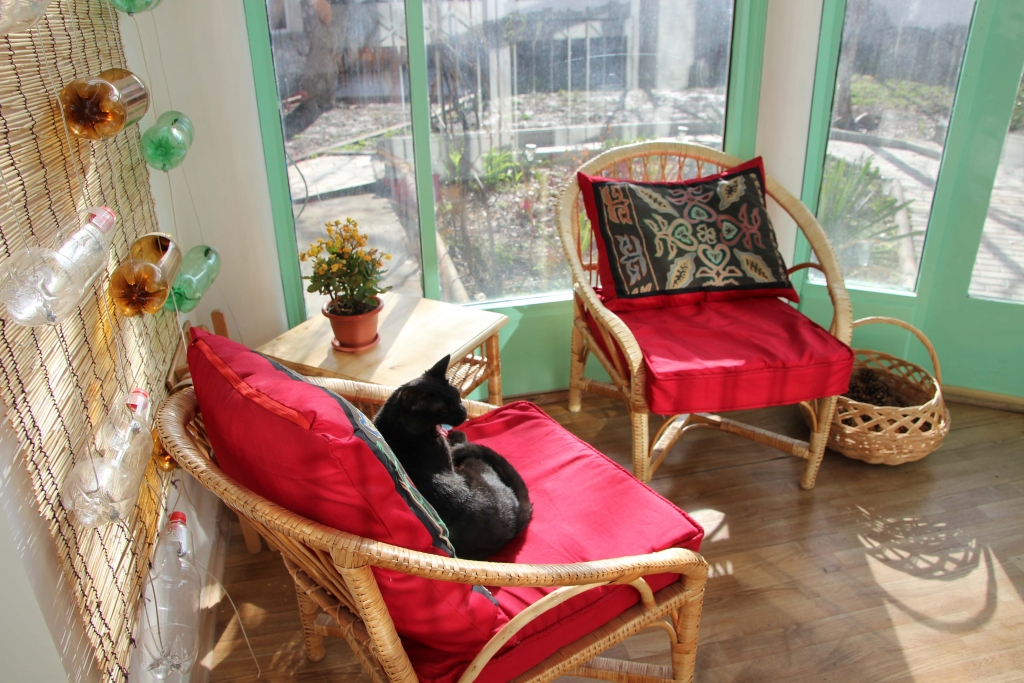 sunroom at Southside Guesthouse