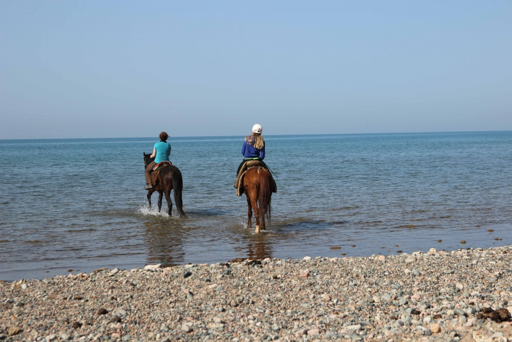 Refreshing ride in lake Issyk-Kul