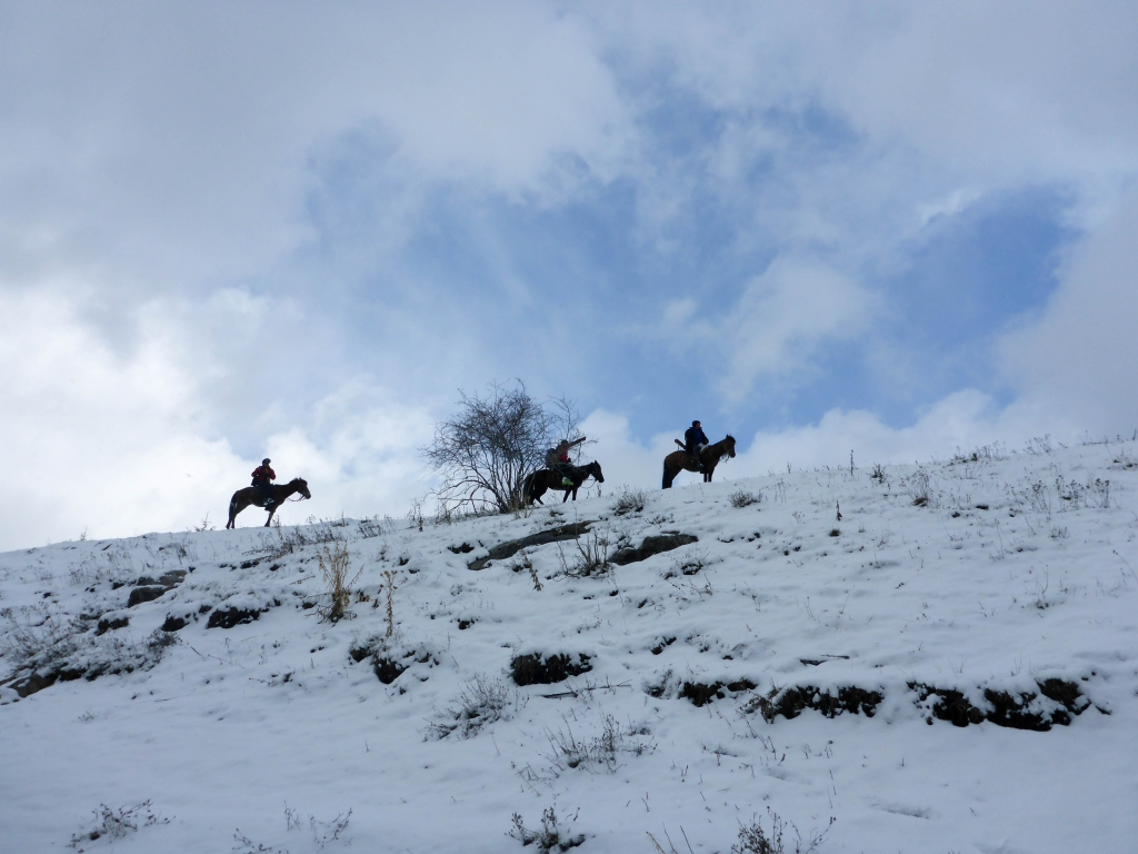 horse and ski in Boz Uchuk