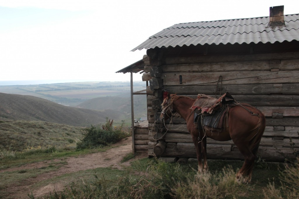 Die Ranger-Hütte
