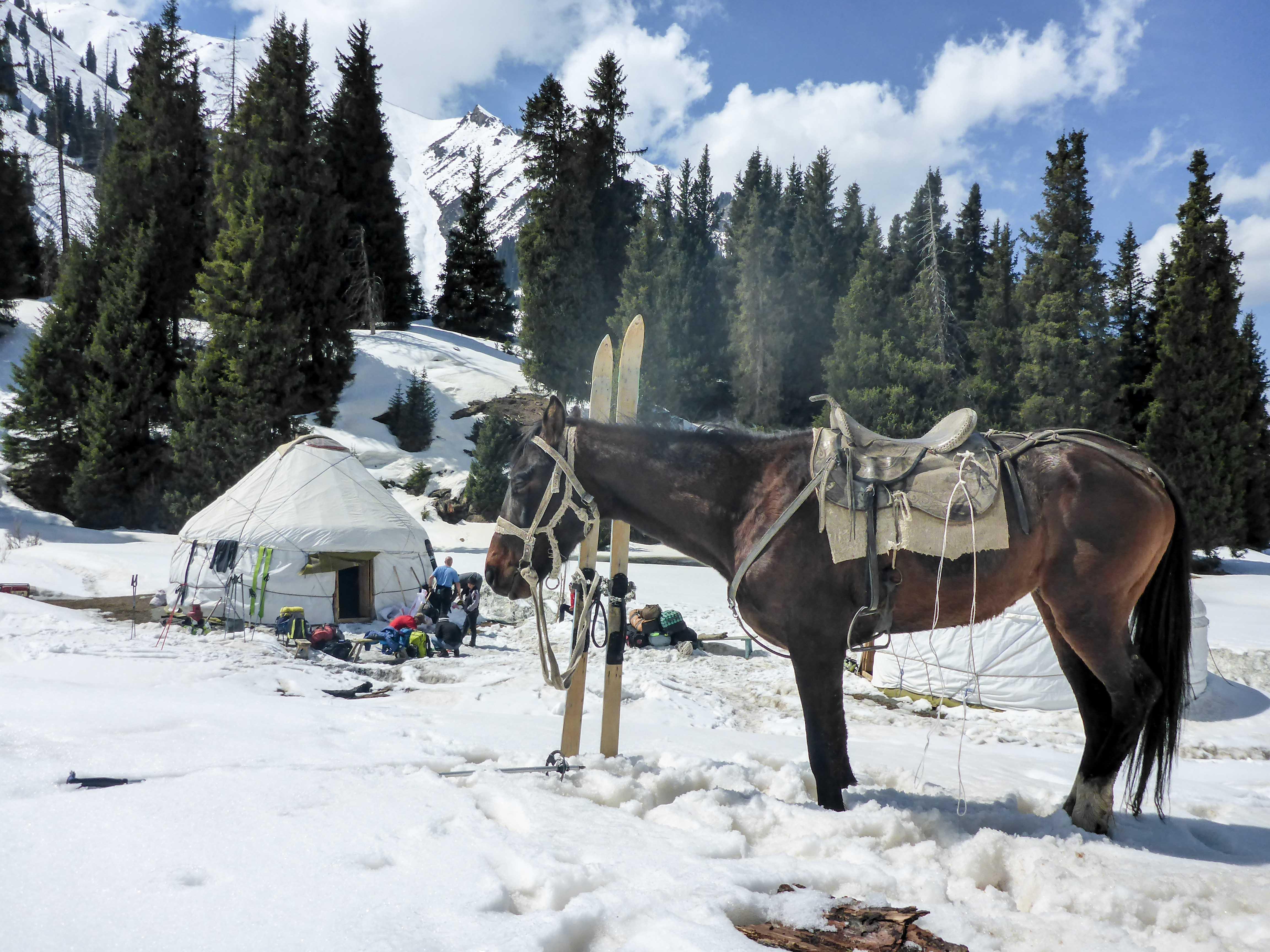 Horse'n Ski in Kyrgyzstan